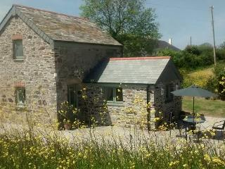 Barn Owl Barn, Rock, St Minver, Cornwall - Rock vacation rentals