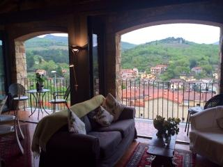 Just 5 minutes from the centre of the Gaiolie, wonderful apartment with pool and breathtaking terrace, sleeps 6 - Gaiole in Chianti vacation rentals