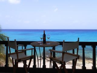 Sea Dreams - Harbour Beach Village - Saint Croix vacation rentals