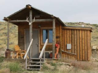 Cabin w/bath near Yellowstone Park - Belfry vacation rentals