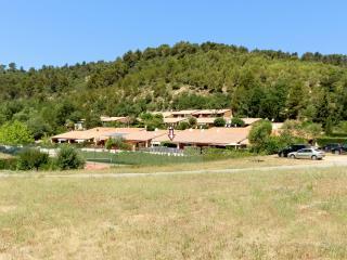 Maison de vacances en Provence - Greoux les Bains vacation rentals