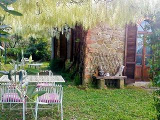 In beautiful Umbrian countryside - Paciano vacation rentals