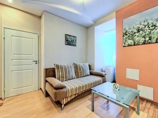 Modern elegant one bedroom with Jacuzzi - Saint Petersburg vacation rentals