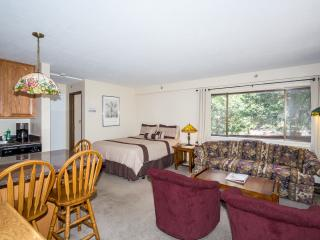 The Perfect Little Studio Condo Inside the Gates o - Yosemite National Park vacation rentals
