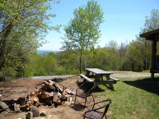 Berkshires Log Cabin with Views! - Charlemont vacation rentals