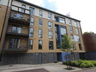 Amazing 2 bed apartment 20 min from Central London - London vacation rentals