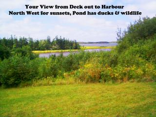 Cottage Weekly Rental on Caribou Harbour - Pictou vacation rentals