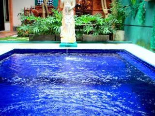 Within easy to Kuta and Denpasar - Denpasar vacation rentals