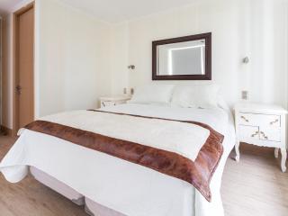 LM1 Apartamento Metro Escuela Militar - Santiago vacation rentals