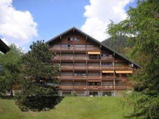 Appartement cosy Domaine des Rochegrises - Villars-sur-Ollon vacation rentals
