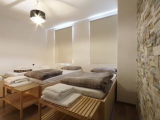 Bed & Wellness Fisterre - Laconicum Room - Belluno vacation rentals