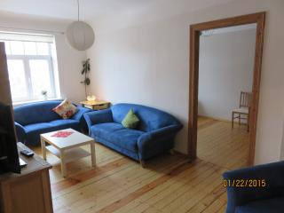 Comfortable quality modern 3 room apt. - Riga vacation rentals