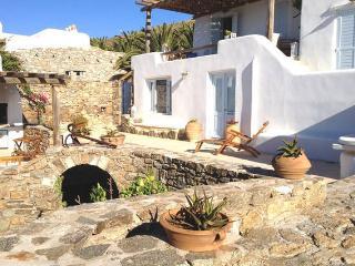 Villa Anima in Mykonos - Mykonos Town vacation rentals
