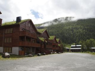 Nice Condo with Internet Access and Wireless Internet - Hemsedal vacation rentals