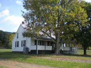 Secluded Cottage on 10 Acres - Luray vacation rentals