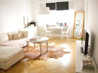 Cosy appartement in central Stockholm - Stockholm vacation rentals