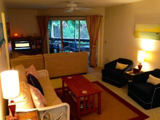 Steps away from the beach, 3 pools, Sauna, Tennis - New Smyrna Beach vacation rentals
