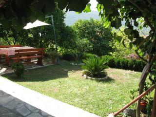Nice Apartment with Internet Access and A/C - Herceg-Novi vacation rentals