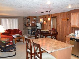 Beaver Village Condominiums #0824R - Winter Park vacation rentals