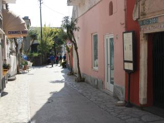 1 bedroom House with A/C in Anacapri - Anacapri vacation rentals
