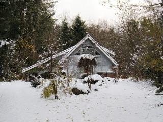 #39 - A great contemporary cabin -pet friendly! - Glacier vacation rentals