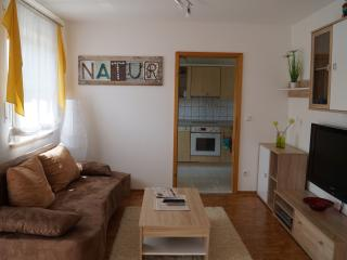 Nice Condo with Deck and Internet Access - Bayreuth vacation rentals