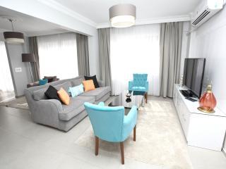 Patika Suites - Blue Zircon Spacious 1 BR - Istanbul vacation rentals
