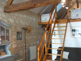 Nice Gite with Internet Access and Balcony - La Chapelle-sur-Loire vacation rentals