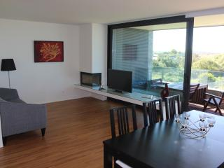 Cozy Beach Apartment - North Coast of Portugal - Esposende vacation rentals