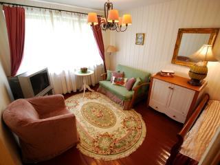 1 bedroom Condo with Internet Access in Druskininkai - Druskininkai vacation rentals
