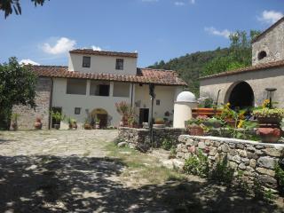 Agriturismo Podere Palazzuolo malvasia - Pontassieve vacation rentals