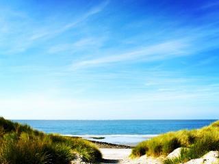 Salt Spray - Camber vacation rentals