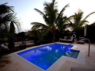 Sugar Cane Ridge 4 - Early 2017 booking specials - Saint James vacation rentals