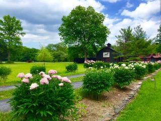 Catskill NY/ 2 Bedroom Cottage on Cauterskill  Crk - Catskill vacation rentals