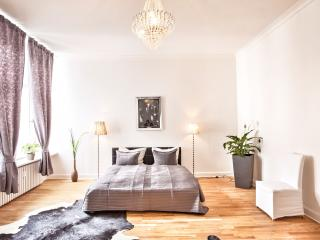 Beautiful Apartment in the center of Berlin - Berlin vacation rentals