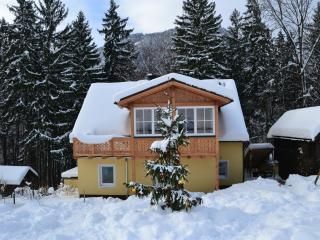 Alpine Meadows apartment (Alpenwiesen Fewo) - Bad Ischl vacation rentals
