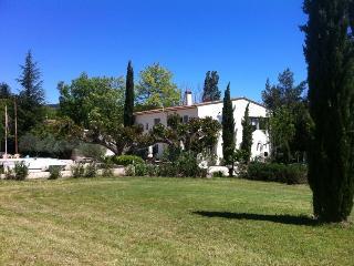 Adorable 4 bedroom Villecroze Villa with Internet Access - Villecroze vacation rentals