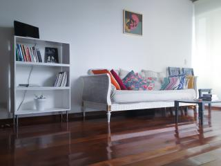 chic flat in palermo! amazing view! 24 h security - Buenos Aires vacation rentals