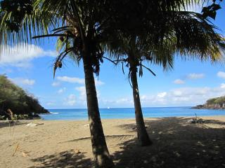 Enchanting Basse-Terre bungalow just 50 metres from Petite Anse beach, with air con and sea view - Bouillante vacation rentals