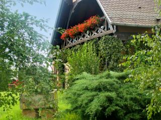 Spacious apartment in Alsace with spectacular garden views from its terrace, 20min from Strasbourg - Hochfelden vacation rentals