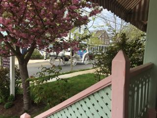 Apt #1 - Great Location! 3 blocks to Congress Hall - Cape May vacation rentals