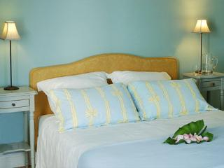 The Blue Room - Manor House, Clos Mirabel B&B - Jurancon vacation rentals