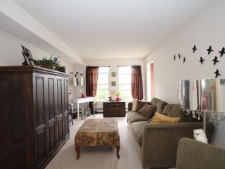 Beautiful Inner City near the river- With a view! - Calgary vacation rentals