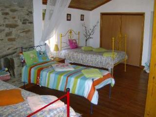 Village house 4 bedrooms in Portugal - Arganil vacation rentals