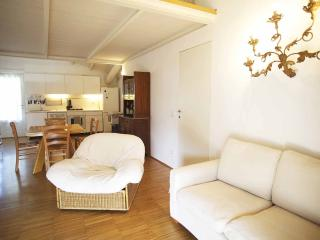Beautiful Bed and Breakfast with Television and Central Heating - Vizzola Ticino vacation rentals