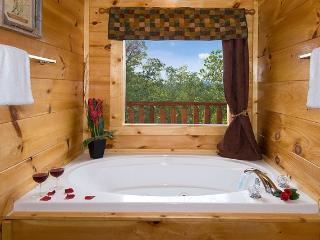 Lumberjack Lodge - Sevierville vacation rentals