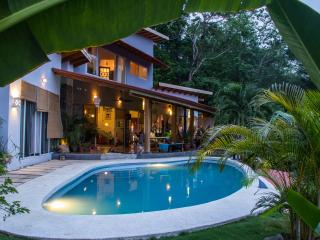 Ocean view villa Casa Drop In - Santa Teresa vacation rentals