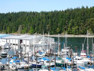 Oceanfront Suite - Excellent Nanaimo location! - Nanaimo vacation rentals