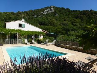 Heated pool, exceptional and magnificent view. - La Roque Alric vacation rentals