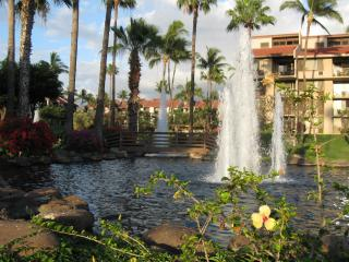 Beautiful 1 bedroom Kihei Apartment with Internet Access - Kihei vacation rentals